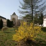 Тихая осень в монастыре | Московский Данилов монастырь