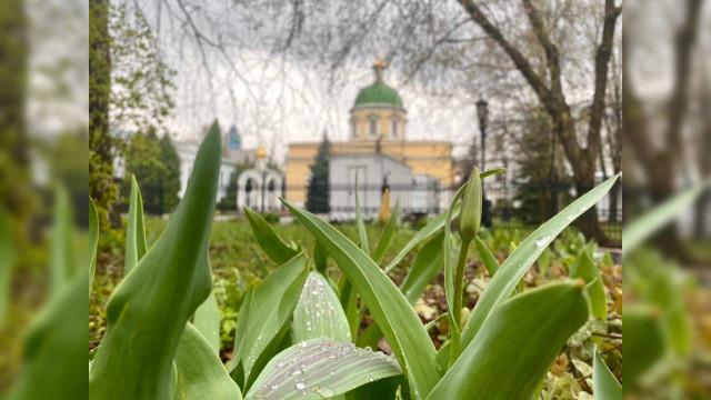 Великая Среда | Московский Данилов монастырь